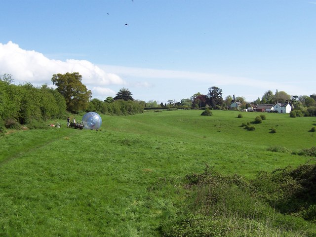 Field, Sedbury Park