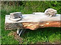 NZ4026 : Detail of bench in Wynyard Woodland Park by Oliver Dixon