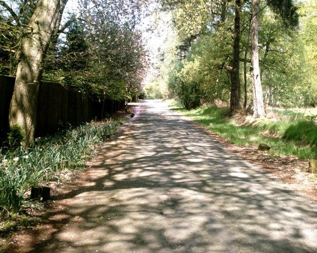 Hogshead Lane, Oakmere