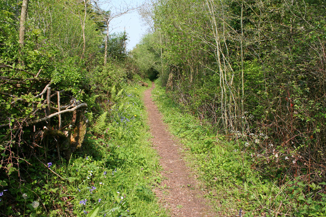 Stawley: path at Greenham