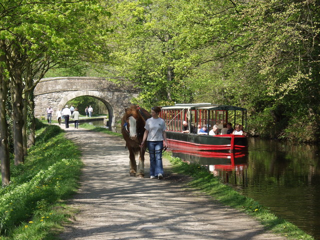 Horse drawn barge at Llangollen