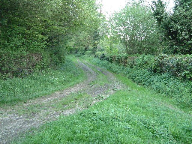 Bridleway near The Lee