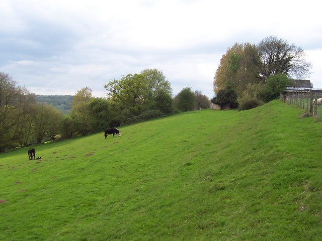 Offa's Dyke by Coxbury Farm