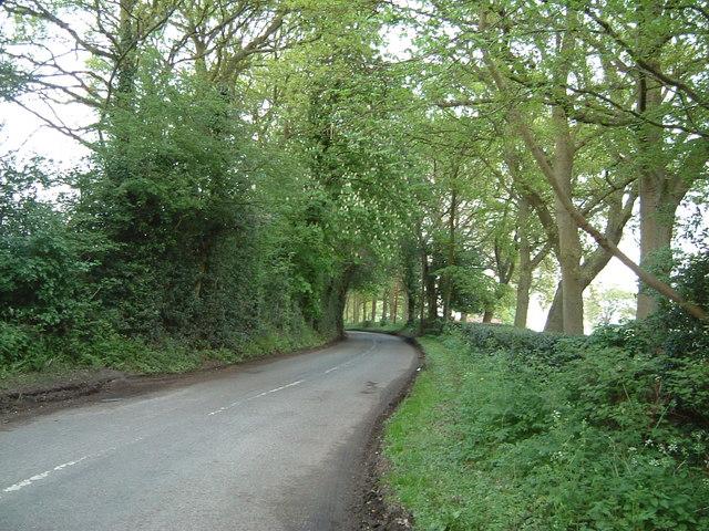 Hunt's Green