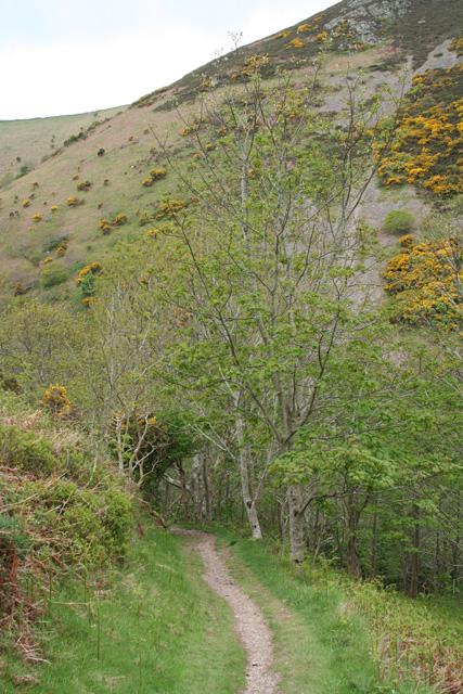 Martinhoe: near Heddon's Mouth Cleave