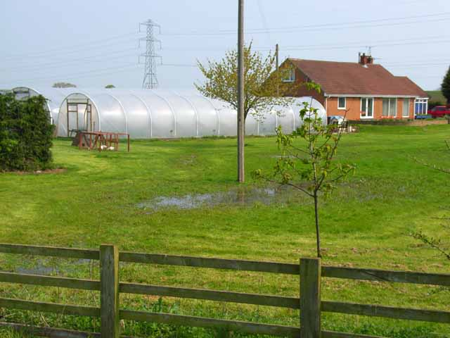 Polythene greenhouses, near Thorpe Thewles