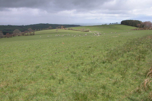 Farmland above Ceulanau, Kerry