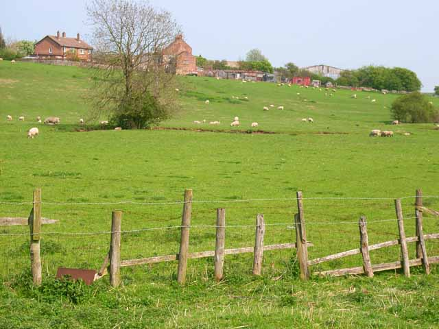 Old Stillington viewed from the Beck