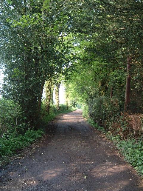 Ashotts Lane, Chartridge