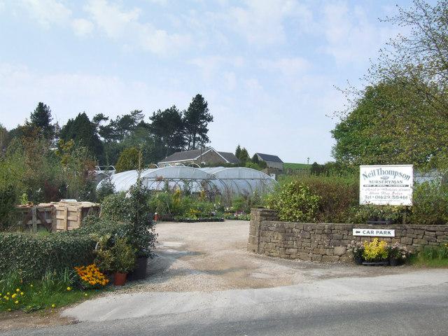 Neil Thompson nursery.