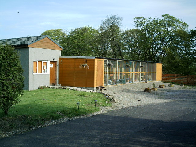 Holmbyre Cattery