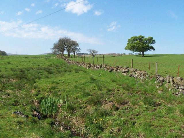 Barnshake Farmland
