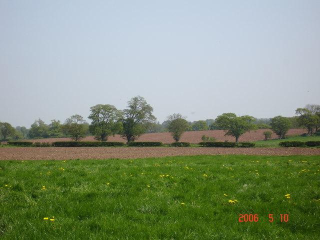 Spring ploughing in Chorlton