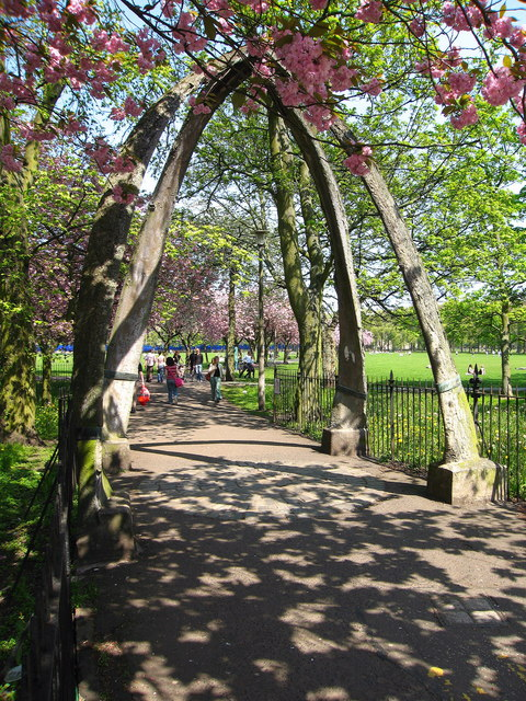 Whale Jawbone Arch, Meadows