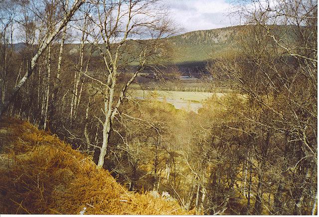 Deeside, West of Pannanich.