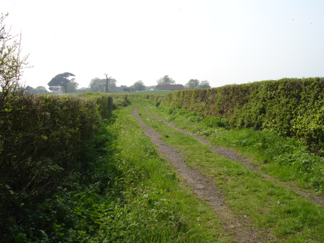 Footpath Nr Pebsham East Sussex
