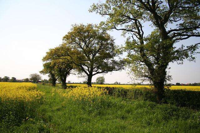 County Boundary