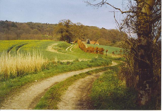 Trackway to Markwood Farm.