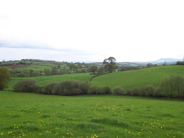 Offa's Dyke Path near Hendre Farm