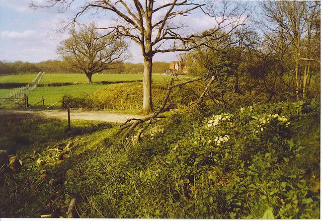 Hillhouse Farm.