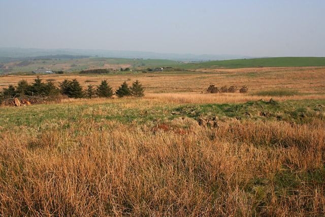Heathland on Morridge Top