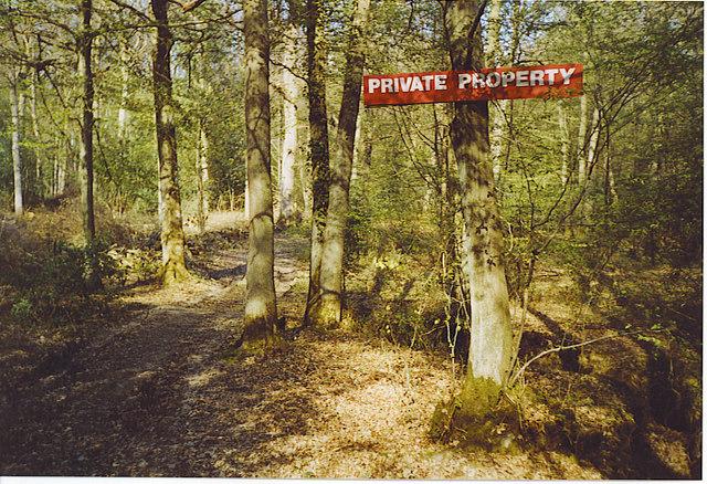 Somersbury Wood.