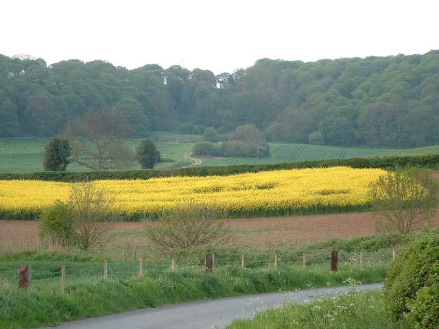 Round Oak hill and fields
