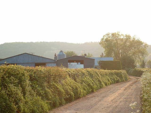 Dairy Farm near The Parks