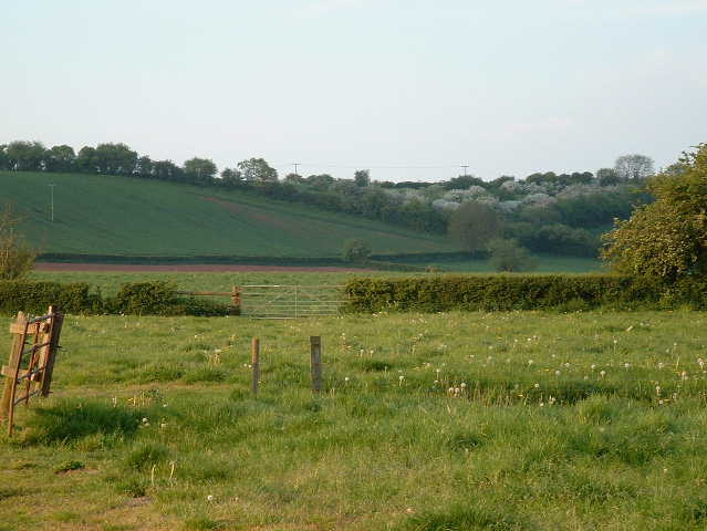 Auberrow Fields