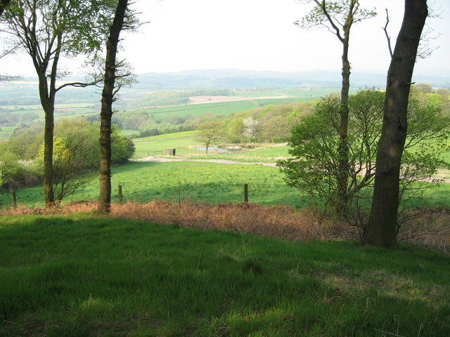 View over Cat Hill