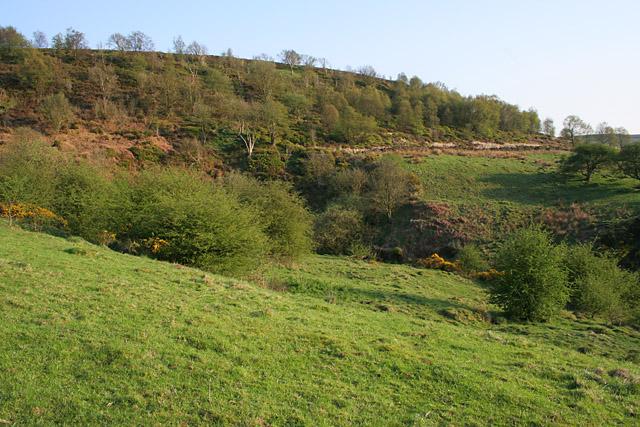 Landscape in the Peak District National Park