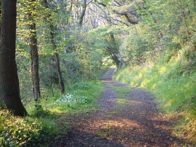 Footpath at Burnwell