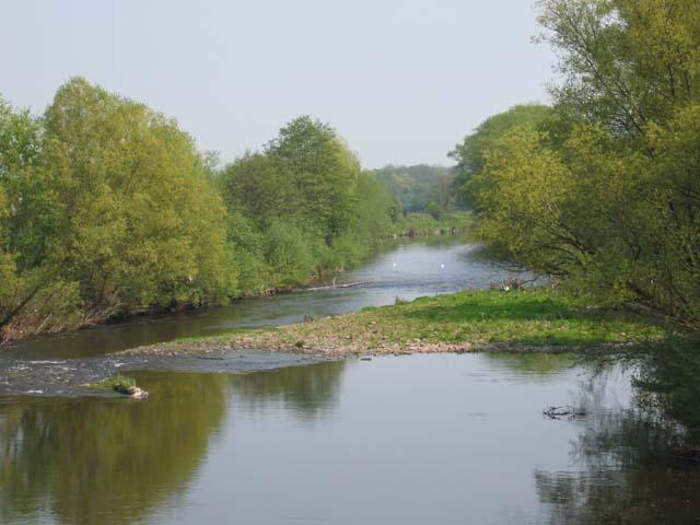River Usk near Llanfihangel Gobion