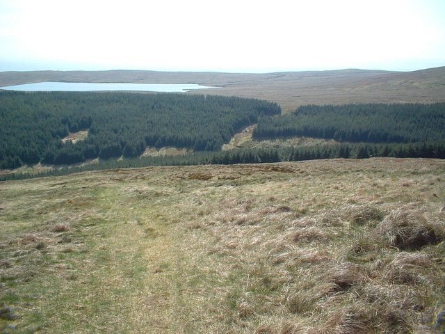 Southern hillside of Meikle Bin