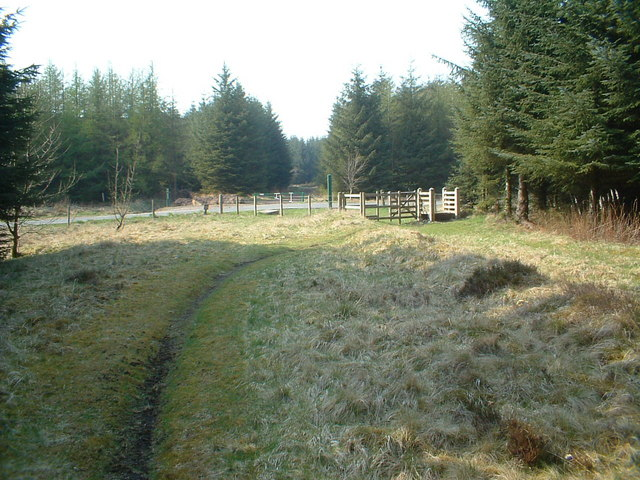 Heathland Forest track crossing the A706 at Wilsontown