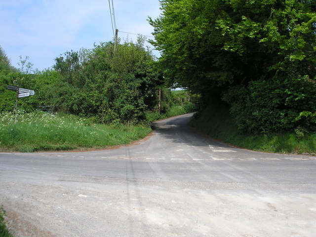 Looking up Hogtrough Hill