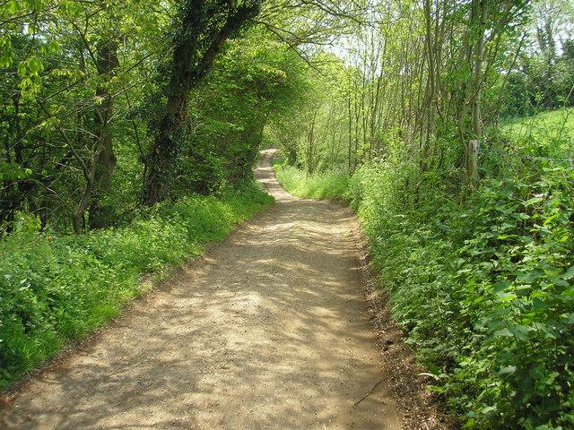Dryhill Lane, a public bridleway