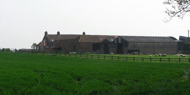 Mill Hill Farm : Mill  Lane