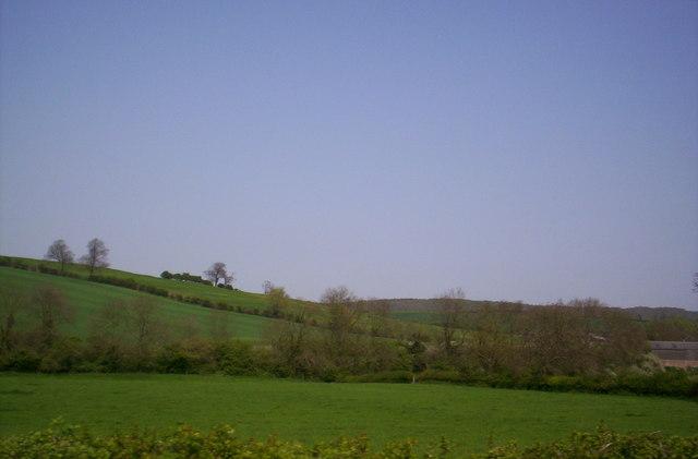 Countryside near Halstead