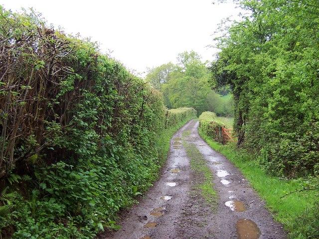 Green Lane near Cwm Farm