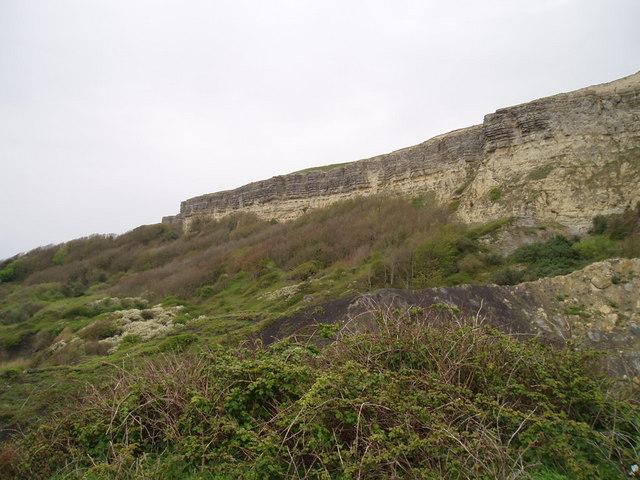 Eroding cliff near Ventnor