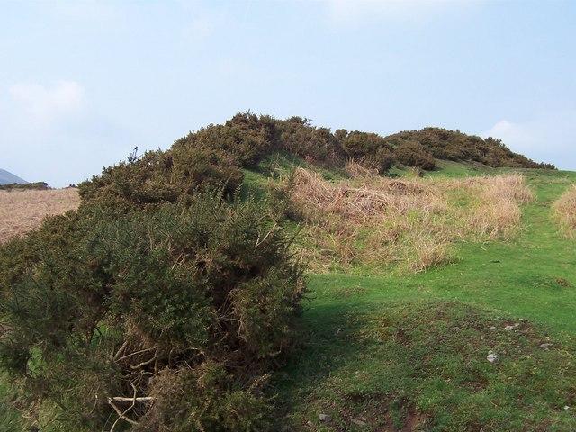 Pentwyn Iron Age Hill Fort