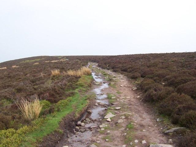Hatterrall Hill (2)
