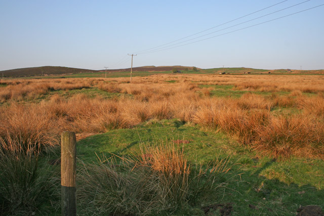 Moorland pasture at Moss Top