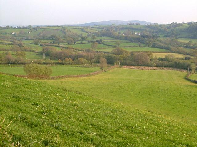 Towards Sloncombe from  lane near Linscott