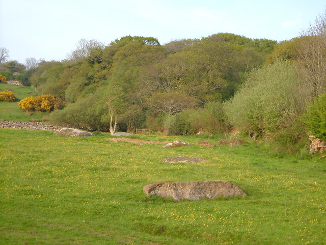 Field and wood near Linscott