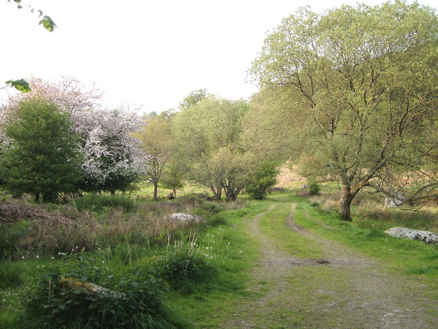 National Trust path at Forder