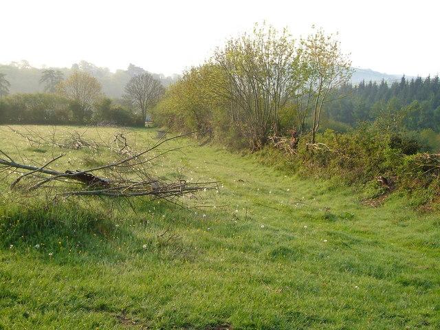 Footpath to Bilberryhill