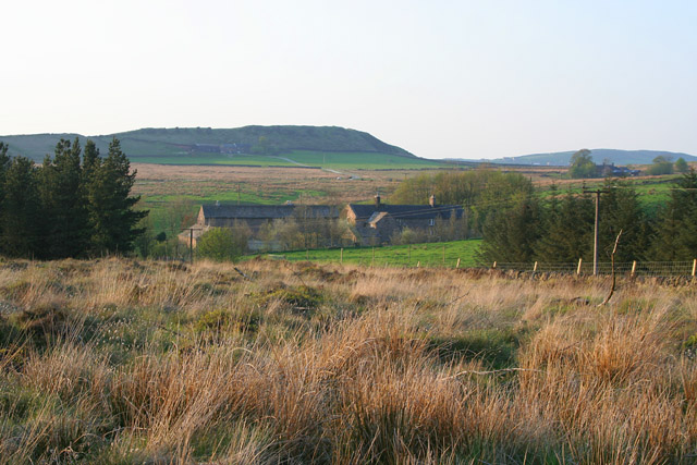 Black Brook Nature Reserve