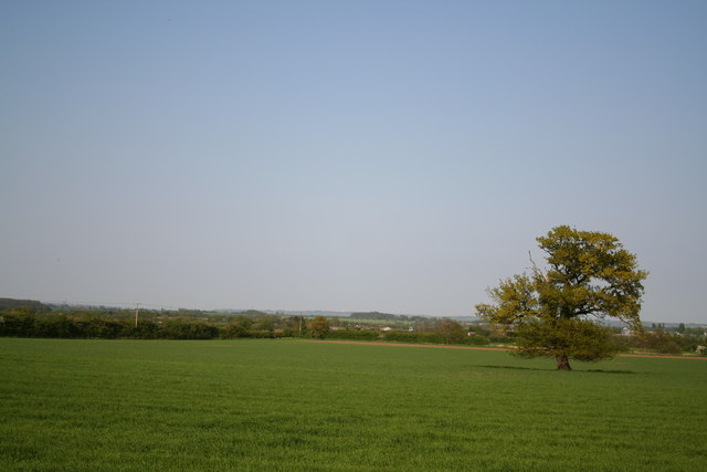 View from Romanstone Plantation